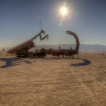 Big bugs battle it out on the Playa