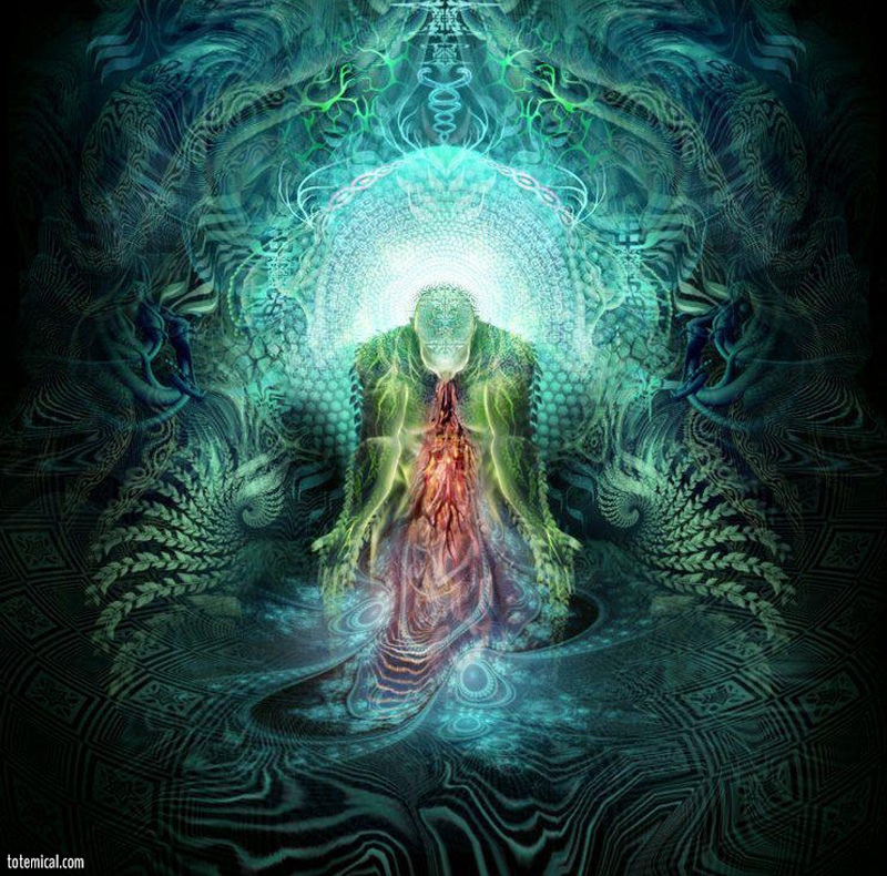 Discovering Ayahuasca (part 4) - My Third Encounter
